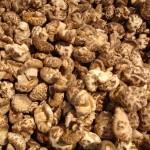 Le champignon shiitake améliore l'immunité humaine