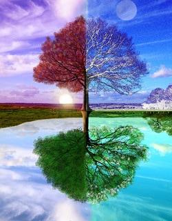 Le temps du changement: même volonté, même vocation mais voie différente