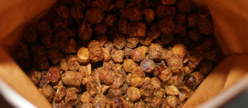 Pain d'abeille – Le prochain grand superaliment apithérapeutique
