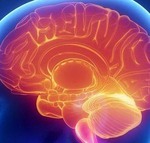 Les progrès de la recherche en acupuncture, bien plus qu'un simple soulagement de la douleur.
