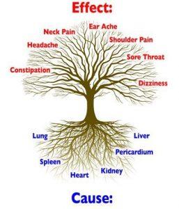 Réécrire la ConstitutionLe Blog d'Acupuncture – Votre Compagnon d'Acupuncture Essentiel