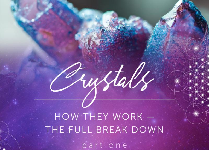 Comment travaillent-ils? – la décomposition complète! PARTIE 1