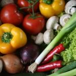 Carnivore Diet Debunk Dietary Fiber