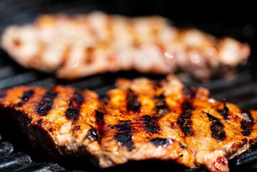 Démystifier la pseudo-science du régime carnivore – Partie 2 (fibres alimentaires, vitamine C, magnésium, anti-nutriments et plus)
