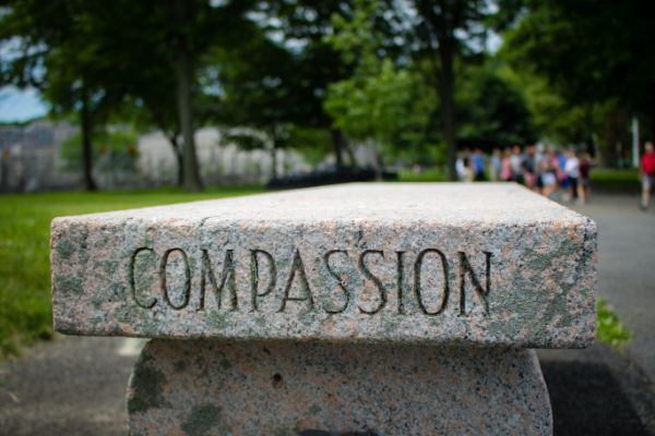 Travailler avec l'auto-compassion – The Hypnotherapy Training Company